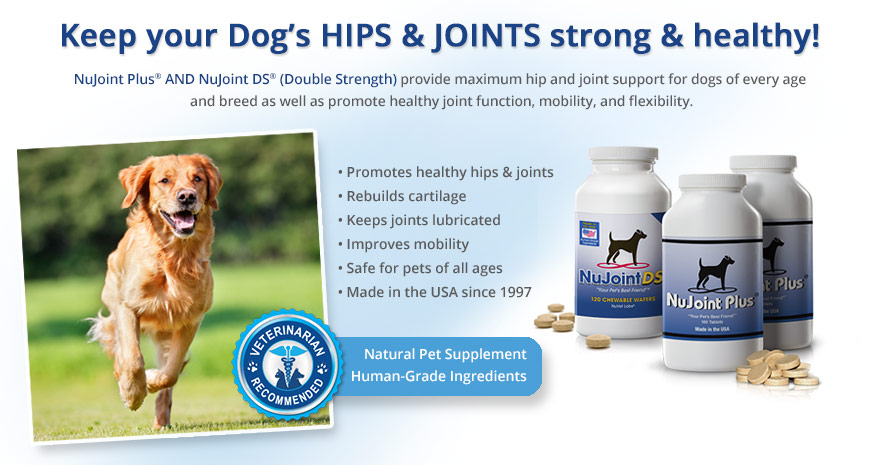 nujoint-plus-and-nujoint-ds-supplements