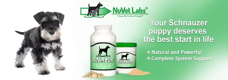 nuvet-labs-pet-supplements