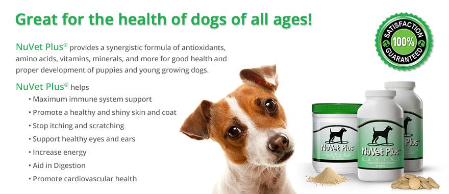 nuvet-plus-pet-supplements-vet-recommended